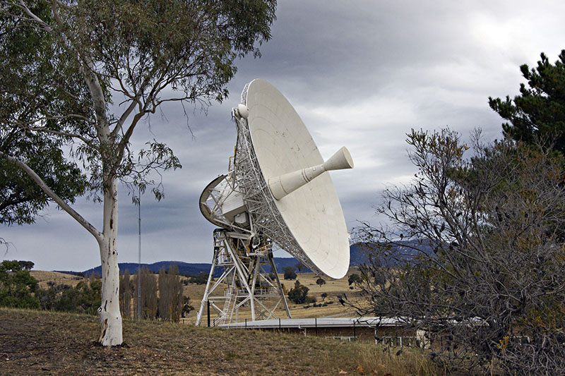 Deep Space station 45 with the dish on an angle, gum tree in foreground, hills in back